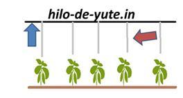 instalación del yute